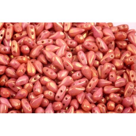 Dvoudírkový hexagon č.6