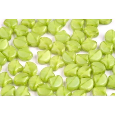 Korálky broušené 269 (4 mm)