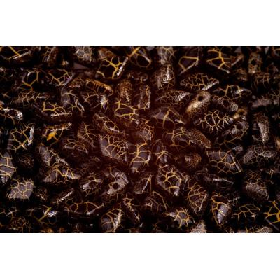 Dřík s ploškou ocel - 8 mm