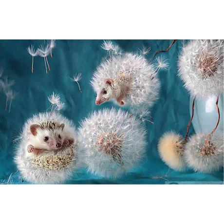 Pěnová guma Moosgummi č.4
