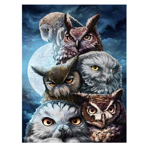 Diamond painting - owls no. 7