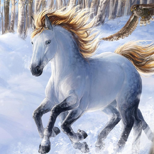 Diamond painting - White Horse No. 36