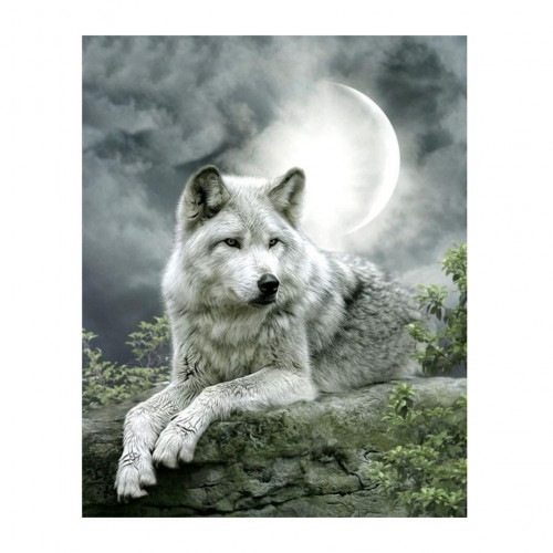 Diamond painting - Wolf at full moon No.45