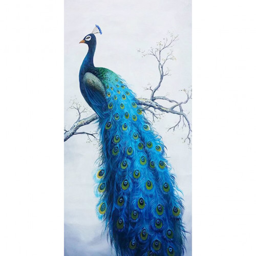 Diamond painting - Peacock no. 60