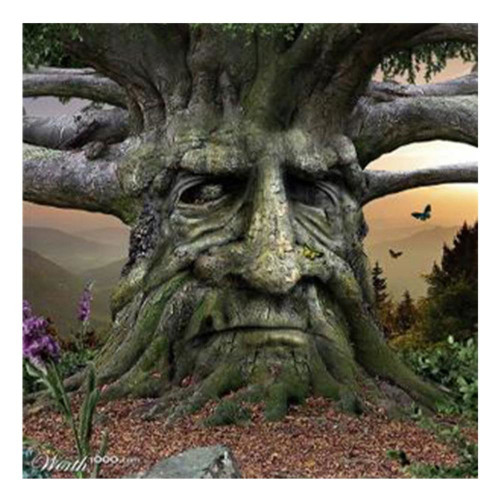 Diamond painting - Old tree with face no.134