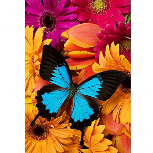 Diamond painting - Butterfly on flowers No.143